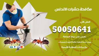 مكافحة حشرات الاندلس