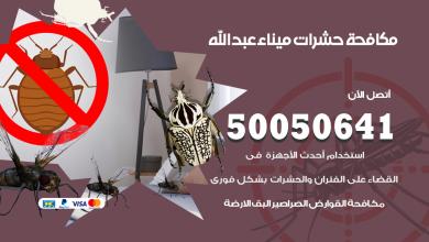 مكافحة حشرات ميناء عبدالله